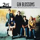 The Best Of Gin Blossoms 20th Century Masters The Millennium Collection thumbnail