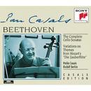 Beethoven: Complete Cello Sonatas & Variations On Zauberflöte Themes thumbnail