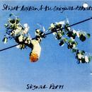 Signal Path thumbnail