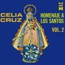 Homenaje A Los Santos Vol.2 thumbnail