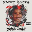 Looking Grown (Single) thumbnail