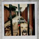 Black Dogs thumbnail