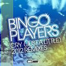 Cry [Just A Little] (2012 Remixes) thumbnail