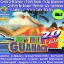 Pura Cumbia Guanaca, Vol. 2 thumbnail