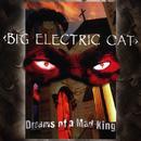 Dreams Of A Mad King thumbnail