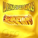 La Reina De Las Bandas Vol. I thumbnail