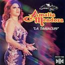 "Amalia Mendoza ""La Tariacuri"" thumbnail"