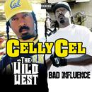 The Wild West & Bad Influence (Deluxe Edition) thumbnail
