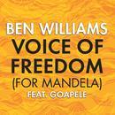 Voice Of Freedom (For Mandela) thumbnail