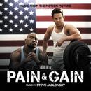 Pain & Gain (Music From The Motion Picture) thumbnail