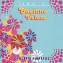 Caetano Veloso Instrumental thumbnail