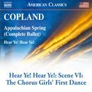 Hear Ye! Hear Ye!: Scene 6, The Chorus Girls' First Dance thumbnail