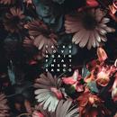 Love Again (Feat. JMSN & Sango) thumbnail