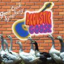 Acoustic Goose thumbnail