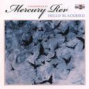 Hello Blackbird thumbnail