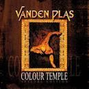 Colour Temple thumbnail