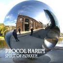 Spirit Of Nøkken (Live) (Explicit) thumbnail