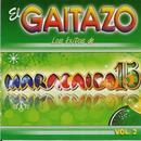 El Gaitazo: Los Exitos De Maracaibo 15, Vol. 2 thumbnail