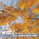 Sky Extended Mix thumbnail
