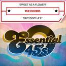 Sweet as a Flower / Boy in My Life (Digital 45) thumbnail