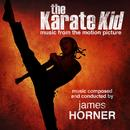 The Karate Kid (Original Soundtrack) thumbnail