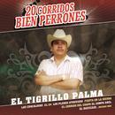 20 Corridos Bien Perrones thumbnail