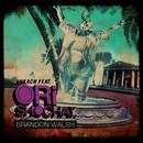 Brandon Walsh (Single) thumbnail