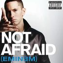 Not Afraid (Radio Single) (Explicit) thumbnail