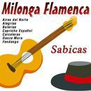 Milonga Flamenca thumbnail
