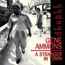 A Stranger In Town thumbnail