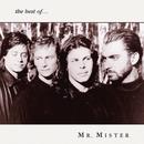 The Best Of Mr. Mister thumbnail