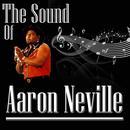 The Sound Of Aaron Neville thumbnail