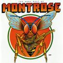 The Very Best Of Montrose thumbnail