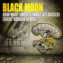 How Many Emcee's (Must Get Dissed) (Ricky Vaughn Remix) (Single) thumbnail