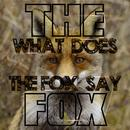 What Does The Fox Say (Single) thumbnail