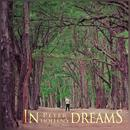 In Dreams (Radio Single) thumbnail