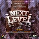 Next Level Riddim thumbnail
