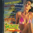 Sus Grandes Exitos De Los Yaguaru De Angel Venegas thumbnail