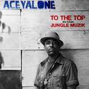 To The Top / Jungle Muzik thumbnail