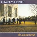 The Caution Horses thumbnail