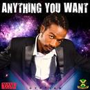 Anything You Want (Single) thumbnail