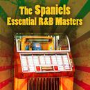Essential R&B Masters thumbnail