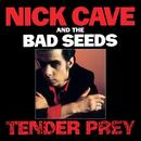 Tender Prey (2010 Remastered Version) thumbnail