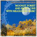 Nature Sounds with Music: Moonlit Forest and Secret Cave with Relaxation Music thumbnail