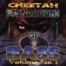 Foundations Of Bass Vol. 1 thumbnail