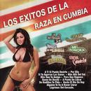 Los Éxitos de la Raza en Cumbia thumbnail
