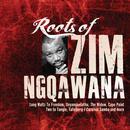 Roots of Zim Ngqawana thumbnail