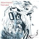 Downtown Harvest thumbnail