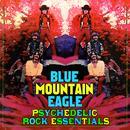Psychedelic Rock Essentials thumbnail