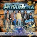 Cumbias Y Rancheras thumbnail
